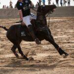 DSC 0886 150x150 - Un'altro successo del Versilia Polo Beach Cup per l'edizione 2014