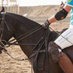 DSC 1002 150x150 - Un'altro successo del Versilia Polo Beach Cup per l'edizione 2014