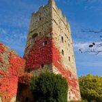 ADSI.Castello di Porciano 150x150 - 100 DIMORE TOSCANE APRONO AL PUBBLICO CORTILI E GIARDINI