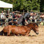 Maggengo Coltano 2016 8113 150x150 Si è svolta  il 4 e il 5 Giugno la 5^ edizione della Festa del Maggengo