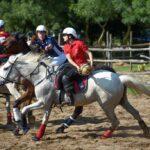 Maggengo Coltano 2016 8369 150x150 Si è svolta  il 4 e il 5 Giugno la 5^ edizione della Festa del Maggengo