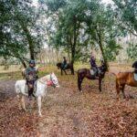 SAM 4530 150x150 - 19° Benedizione degli Animali San Rossore