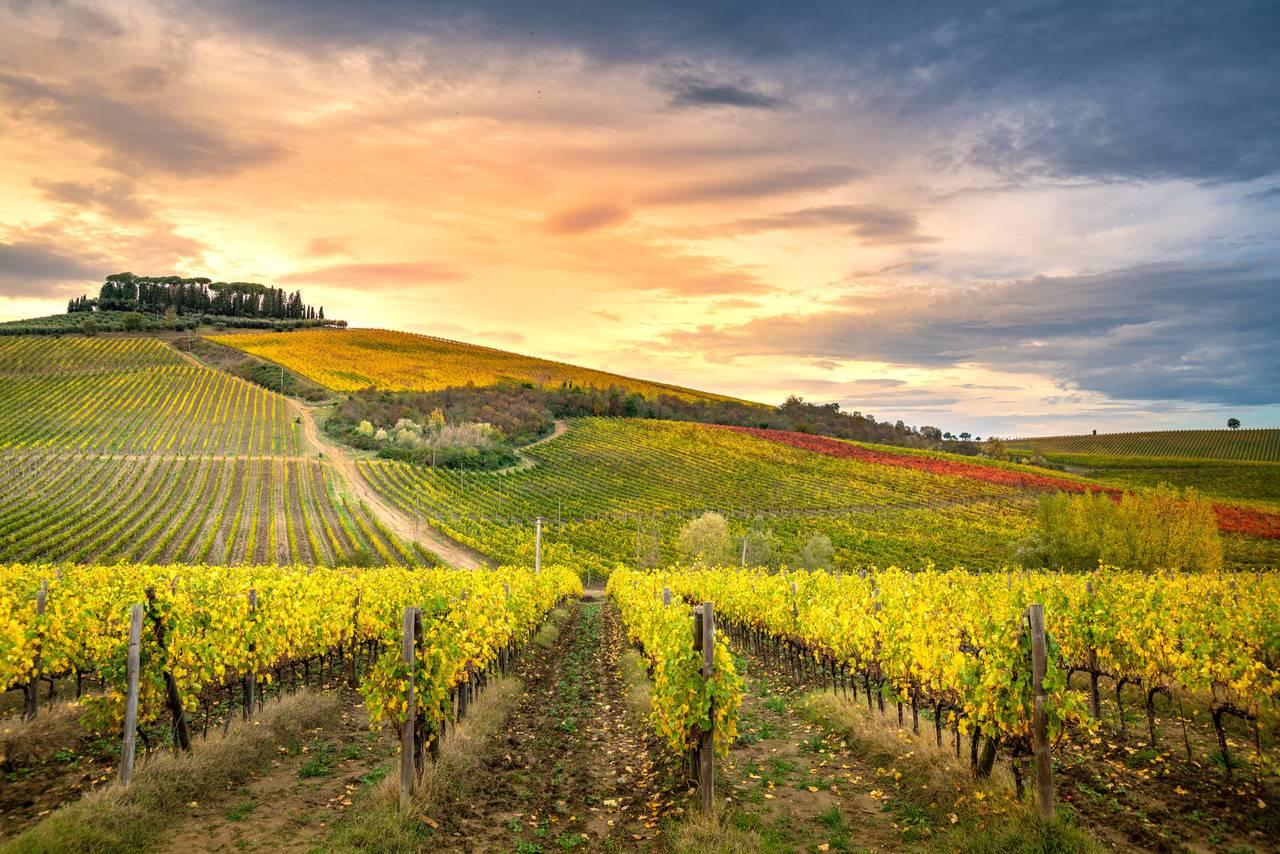 Tour della Toscana in 3 giorni: ecco cosa vedere