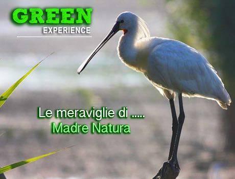 percorsi-naturalistici
